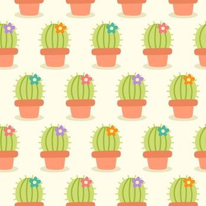 Cute Cacti w/ Colorful Blooms