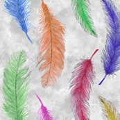 Rfeathers-from-above_shop_thumb