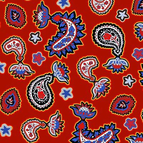 Fourth Of July Paisley