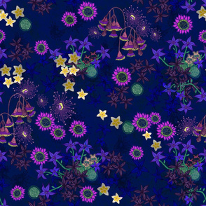 Australian midnight glider flora