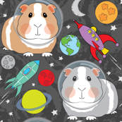 guinea-pigs-in-space on charcoal