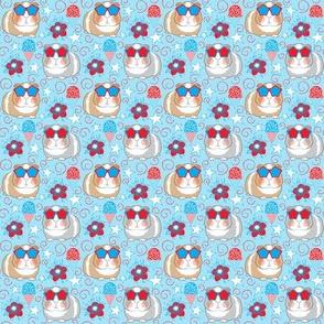 tiny patriotic guinea pigs on blue