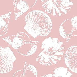 Sea shell indian pink