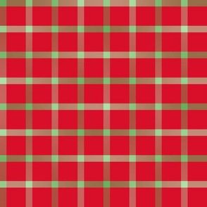 BYF9 -  Open Weave Window Pane Plaid in Green Gradient  on Poinsettia Red