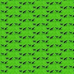 diamond dogs on lime
