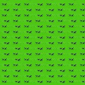 diamond dogs on lime _1