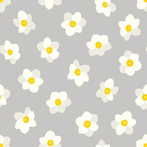 NARCISSUS GRAY 10""