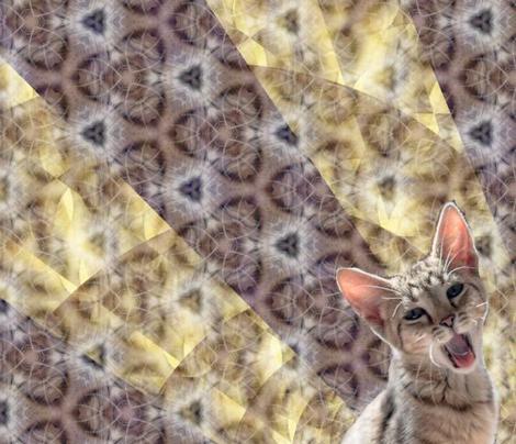 Kitten Spots Fractal