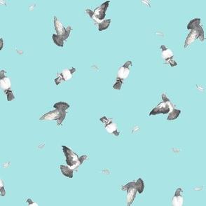 Take Flight Pigeons on Blue