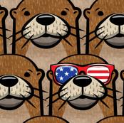 "(3/4"" scale) patriotic otter  C19BS"