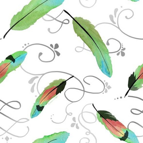 Colorful Lovebird Feathers