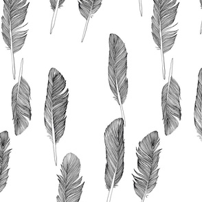 Ink feathers black and white