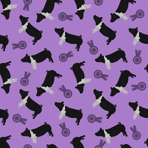 Chasing Purple - Pigs Hamp