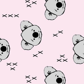 Koala // lace C19BS