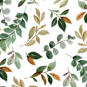 magnolia leaves and branches