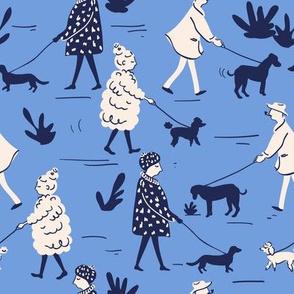 Dog walking in blue