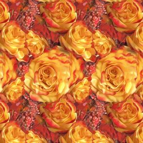 Roses Orange yellow