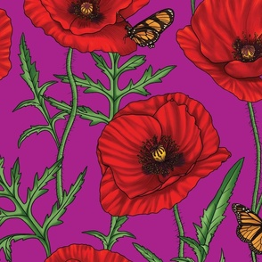 Red Poppy Flowers on Purple Magenta - Large Size