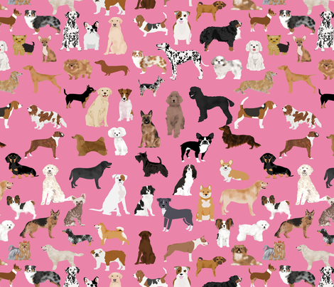 LARGE - dogs -  dog fabric lots of breeds cute dogs best dog fabric best dogs cute dog breed design dog owners will love this cute dog fabric - pink fabric by petfriendly on Spoonflower - custom fabric