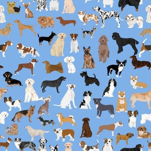 Dogs fabric -  dog fabric lots of breeds cute dogs best dog fabric best dogs cute dog breed design dog owners will love this cute dog fabric - baby blue