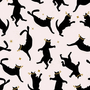 Black Ninja Cats