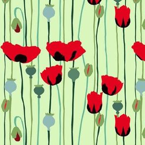 poppies g