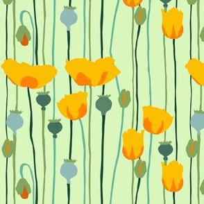 poppies 3g