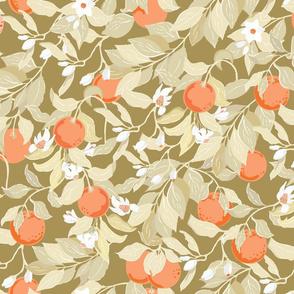 Sweet  Oranges grove