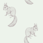 Squirrel line drawing mauve