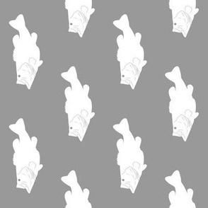 Bass // Grey (rotated 90)