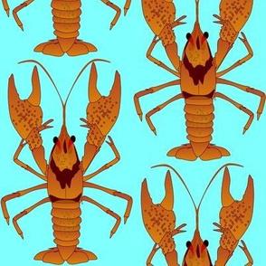 Crayfish natural  on blue