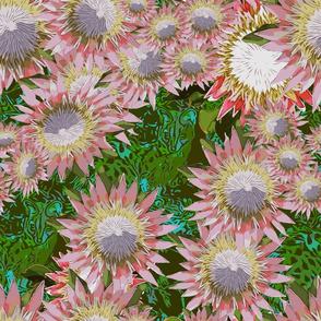 Genets Pollinate!