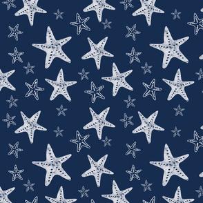 Starfish in Navy