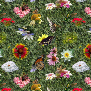 Floral Pollinators Muted
