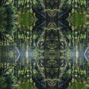 Solar Forest