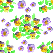 Loose Spring Pansies