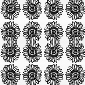 Black and white repeating sunflower