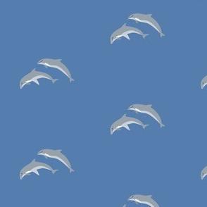 dolphins - blue