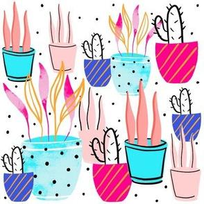 Vibrant plants and cactus