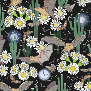 Night Pollinators