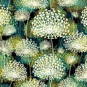 Dandelions 50