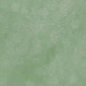 Soft Sage Maidenhair Sunprint Texture
