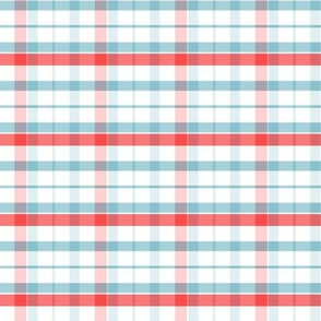 03-26-2019TurquoiseRed Plaid