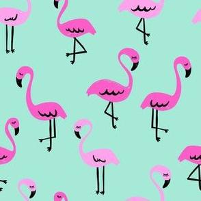 Miami Flamingos // Mint