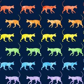 Sphynx cat - watercolor rainbow on navy - hairless cat -  LAD19