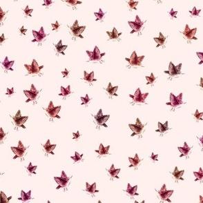 Sparrows, mini