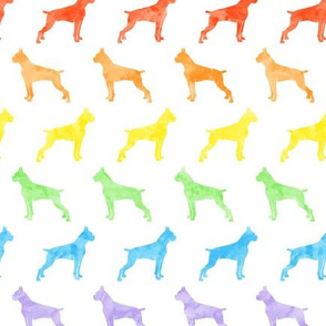 boxer dogs - rainbow (cropped) - LAD19