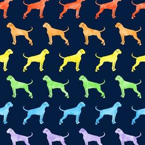 boxer dogs - rainbow on navy - LAD19