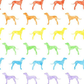 Dalmatians dog - rainbow  - LAD19
