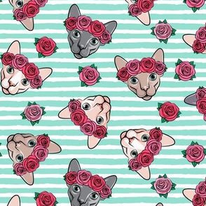Floral Crowned Sphynx - aqua stripes - hairless cat - LAD19